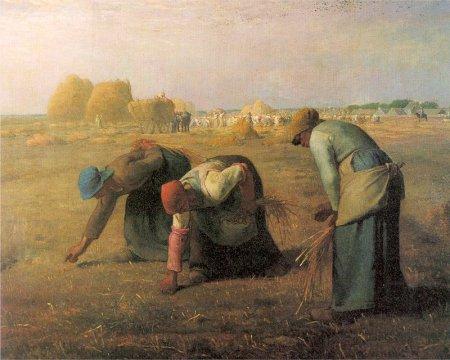 На Волині затримали неповнолітніх рабовласників