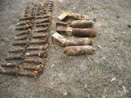 У Сарненському районі піротехніки МНС знешкодили 174 вибухонебезпечних предмети