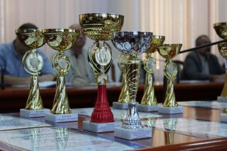 Два рекорди у міжнародних змаганнях, 15 – в українських та понад тисяча медалей вищого ґатунку