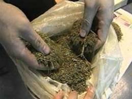 Житель Рівненщини у  подарунок віз півкілограма наркотиків