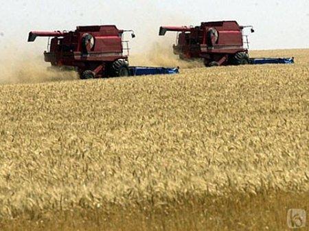 Ющенко нагородив аграріїв Рівненщини