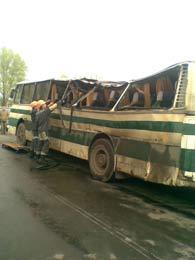 На Львівщині, внаслідок сильного пориву вітру, на автобус упало дерево: 1 л ...