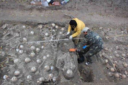 Топ-7 волинської археології 2012 року