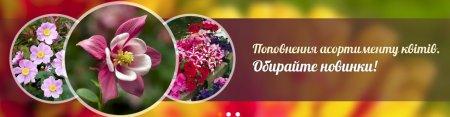 Насіння овочів та квітів