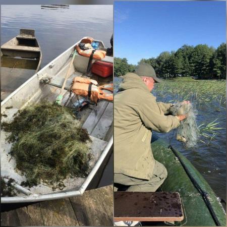 Протягом тижня вилучено майже 90 кг незаконно добутої риби, - Рівненський рибоохоронний патруль