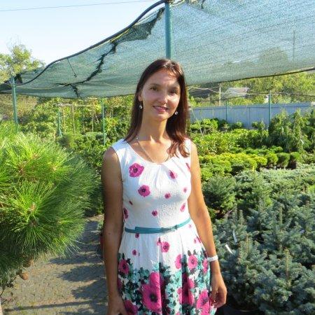 Ландшафтні роботи та догляд за рослинами